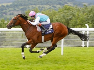 Frankel crowned Cartier Horse of the Year