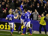 Marouane Fellaini celebrates scoring for Everton
