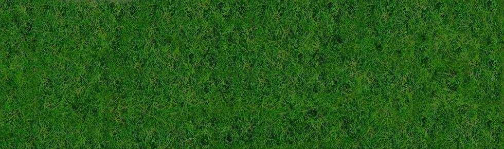 Footer Grass