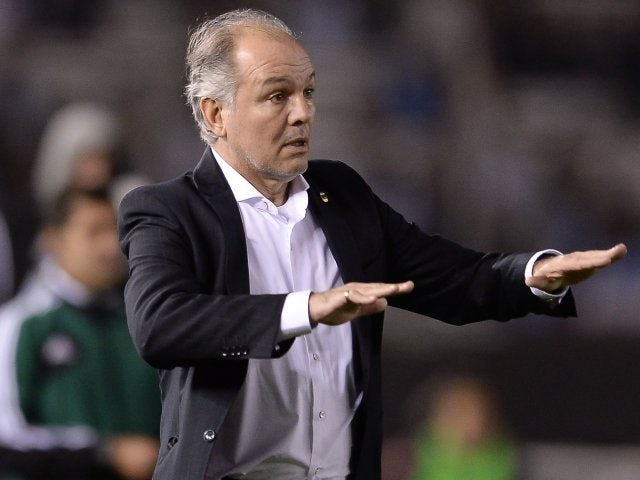 Argentina head coach Alejandro Sabella shouts out orders on October 11, 2013.