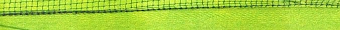 Wimbledon section header