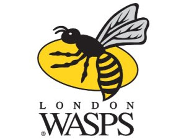 Wasps complete takeover