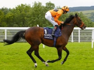 Canford Cliffs retires to stud
