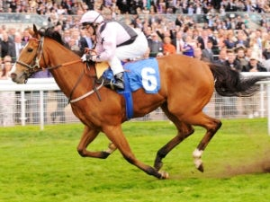 Hoof It supplemented for York