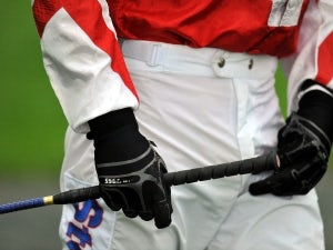 BHA: 'Whip rules to be reviewed'