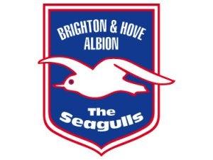 Brighton complete Jara signing