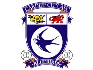 Cardiff plan no crest changes