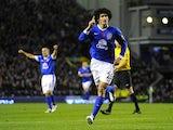 Marouane Fellaini celebrates scoring for Everton