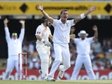 South Africa's Dale Steyn appeals