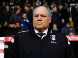 Fulham manager Martin Jol looking stern on November 18, 2012