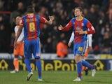 Palace's Owen Garvan celebrates his equalising goal on December 8, 2012