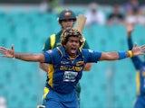 Sri Lanka's Lasith Malinga celebrates taking the wicket of Australia's Mitchell Johnson on January 20, 2013