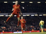 Liverpool skipper Steven Gerrard celebrates his goal against Norwich on January 19, 2013