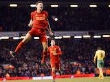 Liverpool skipper Steven Gerrard celebrates his goal against Norwich on January 19, 2013