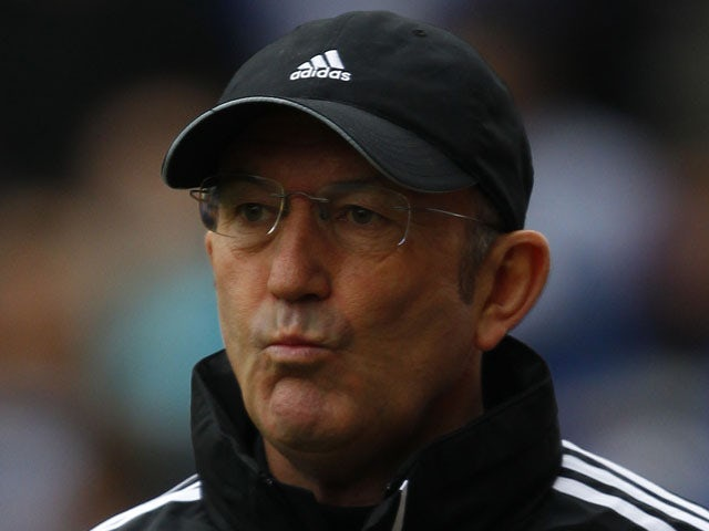 Stoke City manager Tony Pulis before his side's match against Reading on February 9, 2013