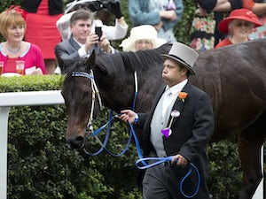 Manager: 'Black Caviar can get better'