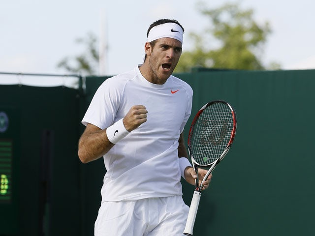 Del Potro downplays knee problem