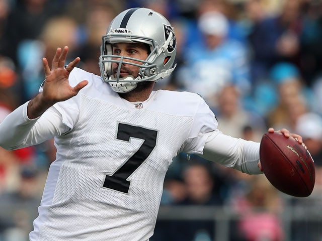 Matt Leinart #7 of the Oakland Raiders drops back to pass against the Carolina Panthers during their game at Bank of America Stadium on December 23, 2012