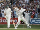 Steve Harmison celebrates the match-winning wicket of Michael Kasprowicz during the second Ashes Test between England and Australia on August 7, 2005