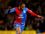 Danny Gabbidon of Palace in action during the Barclays Premier league match between Norwich City and Crystal Palace at Carrow Road on November 30, 2013