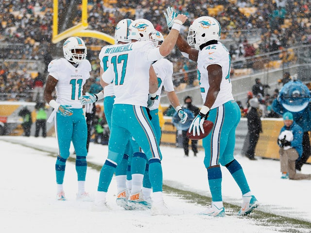 Charles Clay #42 of the Miami Dolphins celebrates his second quarter touchdown against the Pittsburgh Steelers with teammates including Ryan Tannehill #17 at Heinz Field on December 8, 2013