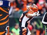 Marvin Jones of the Cincinnati Bengals celebrates after catching a pass for a touchdown during the NFL game against the Baltimore Ravens at Paul Brown Stadium on December 29, 2013