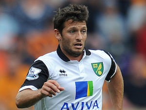 Hoolahan suffers ligament damage