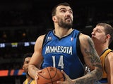 Minnesota Timberwolves' Nikola Pekovic in action against Denver Nuggets on November 15, 2013