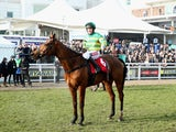 Barry Geraghty celebrates after riding More Of That to victory in the Ladbrokes World Hurdle on St Patrick's Thursday of the Cheltenham Festival at Cheltenham Racecourse on March 13, 2014