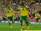 Live Commentary: Middlesbrough 0-2 Norwich City - as it happened