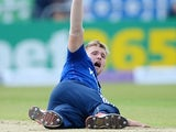 England's David Willey appeals for a wicket during the ODI with Australia on September 11, 2015