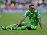 Jermain Defoe lies injured during the Premier League match between Stoke City and Sunderland on April 30, 2016