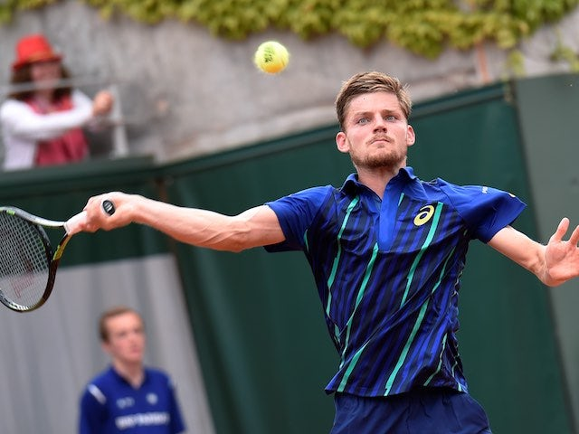 David Goffin in action during the second round of the French Open on May 26, 2016
