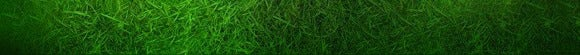 sports mole grass 55