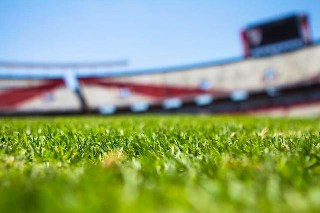football pitch and stadium