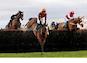 horse jump cheltenham