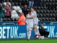 Swansea City's Bersant Celina and Daniel James celebrate after Brentford's Luke Daniels scores an own goal on February 17, 2019