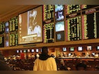 Beginner sports betting terms you should know