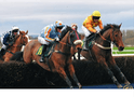 Horse Racing national Hunt Season