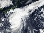 Canada rugby team help with recovery efforts after typhoon cancels World Cup match