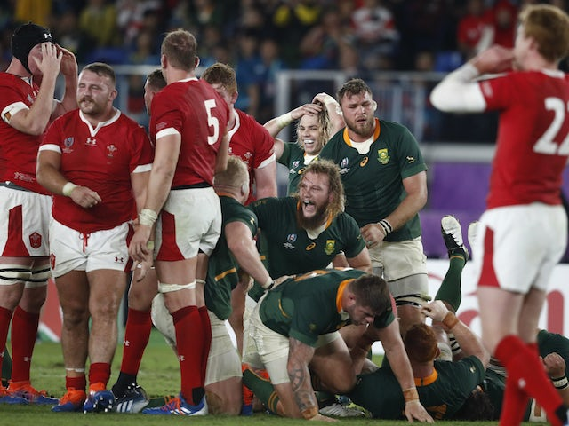 Rugby World Cup day 38: South Africa end Wales dreams to set up England final
