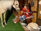 Watch: Shania Twain serenades a horse