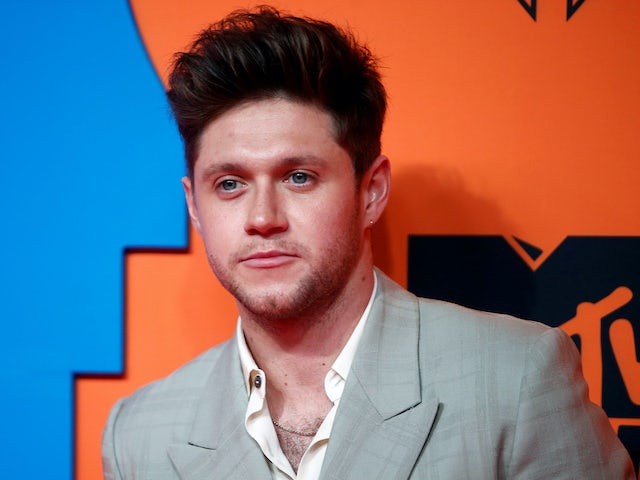 Niall Horan pictured at the EMAs on November 3, 2019