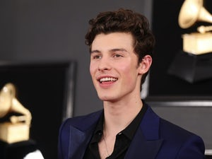 Shawn Mendes pictured in February 2019