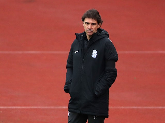 Aitor Karanka calls for patience from Birmingham supporters