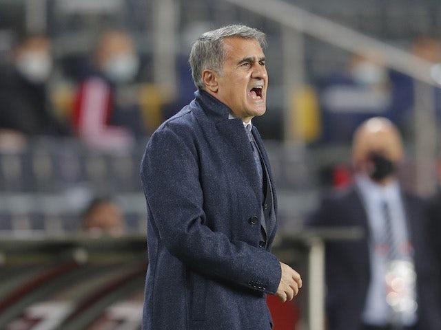 Turkey manager Senol Gunes pictured on November 15, 2020