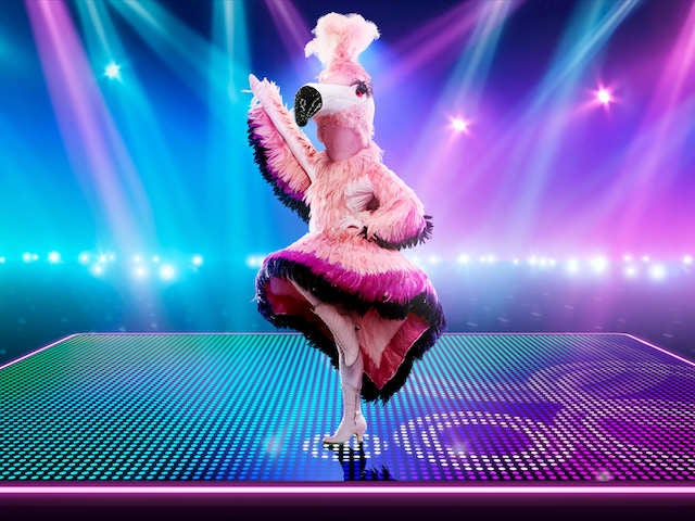 Flamingo on The Masked Dancer series one