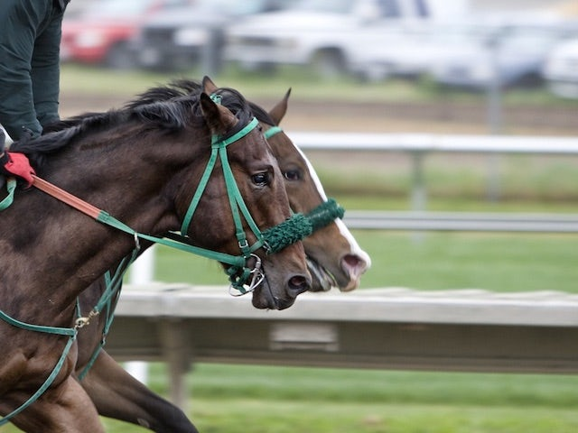 The Ascot horse races, 2021 edition programme