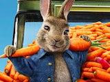 Peter Rabbit in Peter Rabbit 2