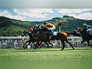 Reasons why horse racing betting is popular